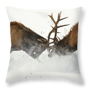 The Duel Of Fighting Elk Throw Pillow