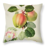 The Dutch Codlin Throw Pillow by William Hooker