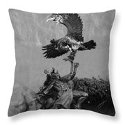 The Eagle And The Indian In Black And White Throw Pillow
