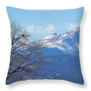 The Eagle's View Throw Pillow