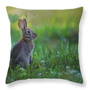 The Eastern Cottontail Throw Pillow