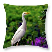 The Egret Outside My Window Throw Pillow