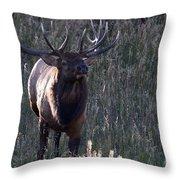 The Elegant Elk Throw Pillow