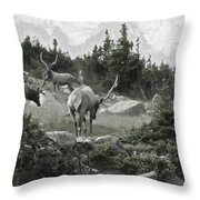 The Elk Painterly 2 Throw Pillow