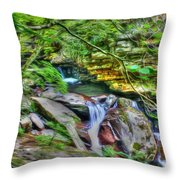 The Emerald Forest 14 Throw Pillow