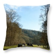 The Emme's Promenade Path Throw Pillow