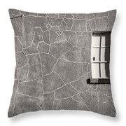 The Emotional Wall Throw Pillow