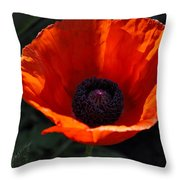 The Empess In Red Throw Pillow