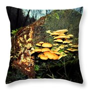 The End Is Just The Beginning Throw Pillow