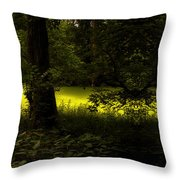 The End Of The Path Mirror Image Throw Pillow