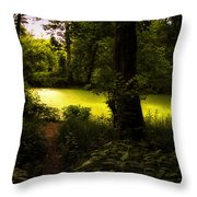 The End Of The Path Throw Pillow