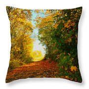The End Of The Road. Throw Pillow
