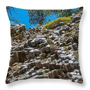 The Ends Throw Pillow