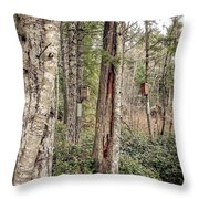 Birdhouse Neighbourhood Hamilton Marsh  Throw Pillow
