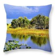 The Everglades Throw Pillow
