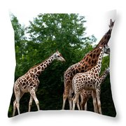 The Extended Family Throw Pillow