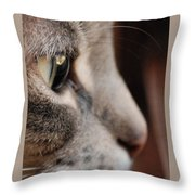 The Eye Has It Throw Pillow