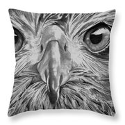 The Eyes Are On You Throw Pillow