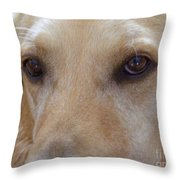 The Eyes Say It All Throw Pillow