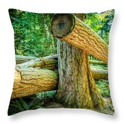 The Fallen Collection 9 Throw Pillow