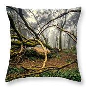 The Fallen Tree II Throw Pillow