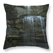 The Falls From Below Throw Pillow