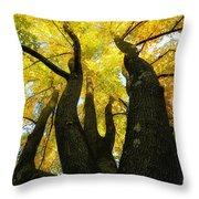 The Family Tree Throw Pillow