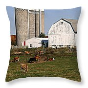 The Farm In Autumn Throw Pillow