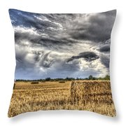 The Farm In The Summer Throw Pillow