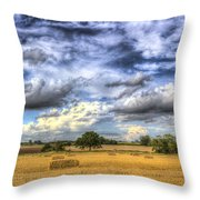 The Farm In The Summertime  Throw Pillow