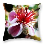 the Feijoa Blossom Throw Pillow