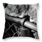 The Fence Eating Tree Throw Pillow