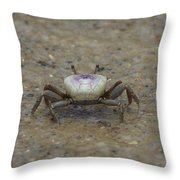 The Fiddler Crab On Hilton Head Island Throw Pillow