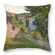 The Field Of Derout-lollichon Throw Pillow
