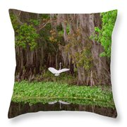 The Fight 1 Throw Pillow
