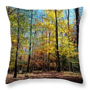 The Final Days Of Autumn Color Throw Pillow