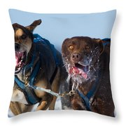 The Final Effort Throw Pillow by Mircea Costina Photography