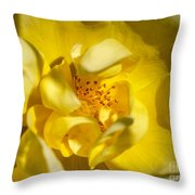 The Finer Things Throw Pillow by Valeria Donaldson