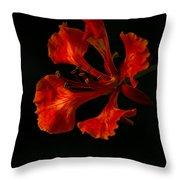 The Fire Flower Throw Pillow