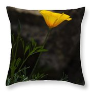 The First Poppy  Throw Pillow