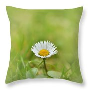 The First White Daisy Throw Pillow