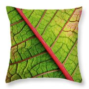 The Flipside Throw Pillow