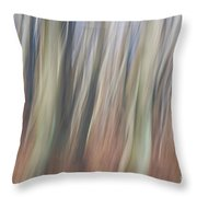 The Flow Of Light V Throw Pillow