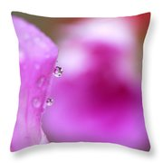 The Flower Enclosed In A Small Drop Of Water Throw Pillow