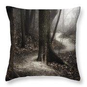 The Foggy Path Throw Pillow by Scott Norris