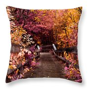 The Followed Rabbit  Throw Pillow
