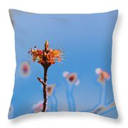 The Following Throw Pillow