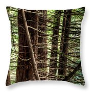 The Forest Combed By The Wind In The Lake Throw Pillow