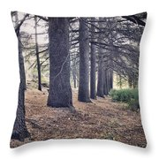 The Forest Of A Thousand Stories Throw Pillow