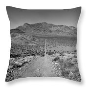 The Forever Road Throw Pillow